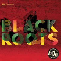 Album: BLACK ROOTS - On The Ground In Dub