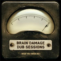 Album: BRAIN DAMAGE - Dub Sessions - What you gonna do ?
