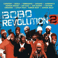 Album: VARIOUS ARTISTS - Bobo Revolution 2