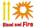 News reggae : Blood & Fire ferme ses portes