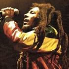 News reggae : Un biopic pour Bob Marley ?