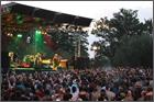 News reggae : Du reggae au Festival gratuit MusicOparc