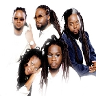 News reggae : Le meilleur de Morgan Heritage chez VP