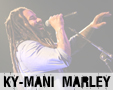 Album photo  : Ky-Mani Marley - Lyon 2015