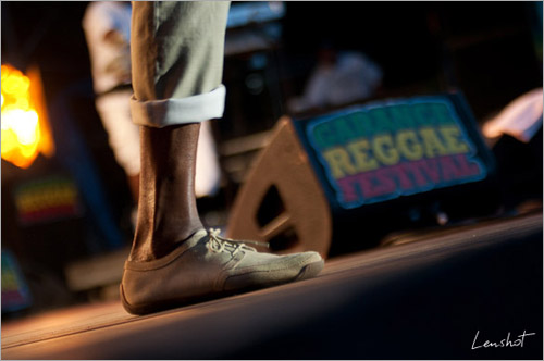 003. Jah Mason (Garance Reggae Festival 2010)