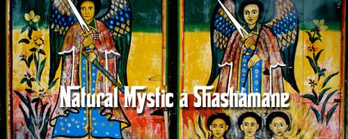 Natural mystic à Shashamane